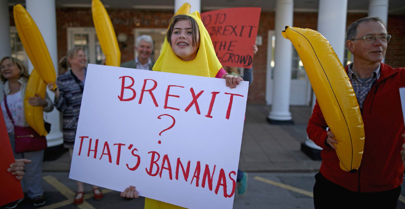 Brexit that is bananas a demonstrant holds a sign dressed in a banana costume