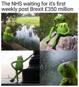 brexit meme kermit the frog as NHS waiting for their 350 million that were promised by brexiteers